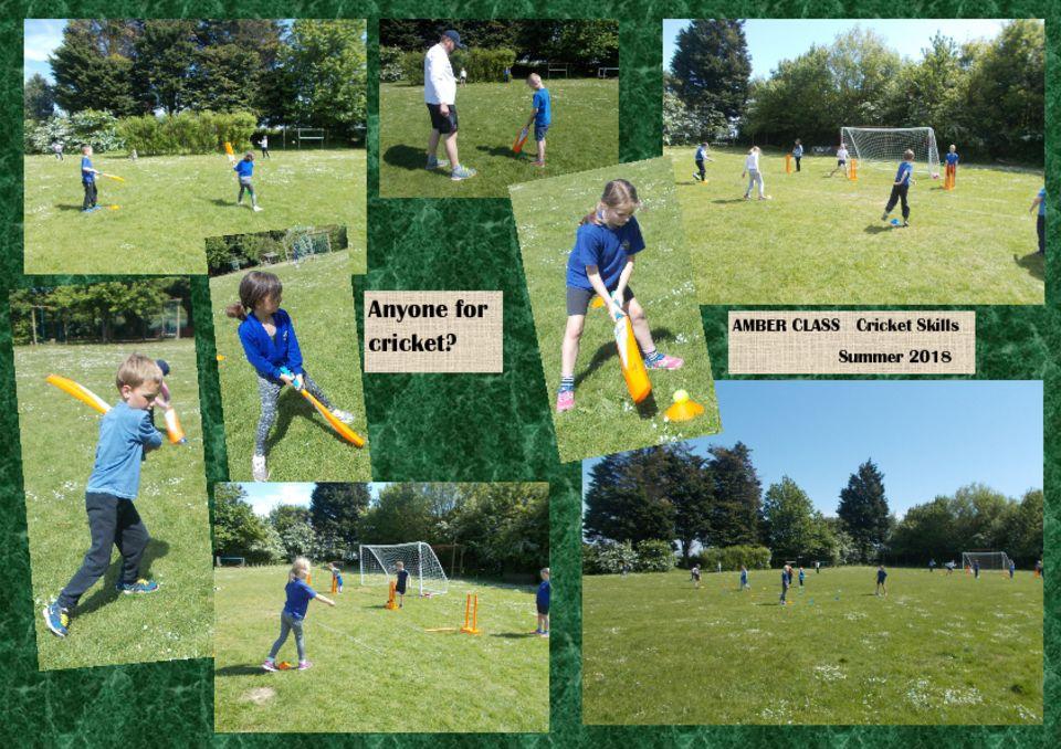 thumbnail of Cricket
